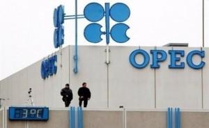 OPEC guards